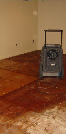 Water Damaged Area In A Basement.